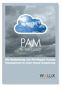 vignette_WP_PAM_IN_THE_CLOUD_DE.png